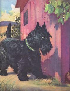 """""""Little Die-Hard, the Scot's Terrier"""" by Wesley Dennis (1903 - 1966) ."""