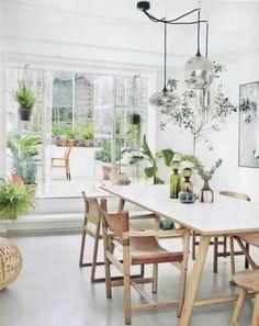 table et chaises en bois clair, plantes vertes d'intérieur, chaises en bois