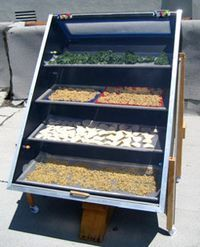 DIY solar dehydrator.  I think I could pull off some smaller version of this.  ;)