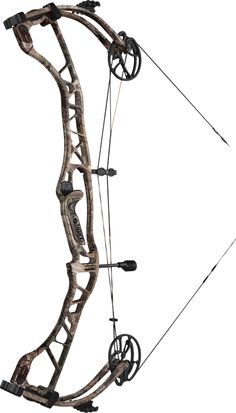 2013 Hoyt Spyder 34 Hoyt Bows, Hunting Toys, Off Grid Survival, Compound Bows, Bowhunting, Bowfishing, Better Half, Crossbow, Archery