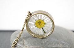 #Real daisy necklace #White flowers pendant #Real plant jewelry #Boho #pressed flower necklace #Christmas gift #gift for her#Real daisy necklace White flowers pendant Real plant jewelry