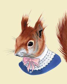 Red Squirrel art print 8x10 by berkleyillustration on Etsy, $18.00