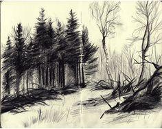 Creuse : Aurélien Cantou - Illustrateur