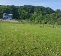 Astra Imobiliare ofera spre vanzare un teren intravilan situat in Faget, zona…