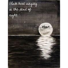 black bird fly