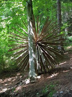Arte Sella, Valsugana, Italy Andy Goldsworthy, Land Art, Mixed Media Art, Italy, Plants, Art, Italia, Mixed Media, Plant