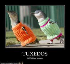 penguinsss :)