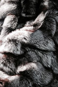 Skin of the wolf | The People of a Forgotten World