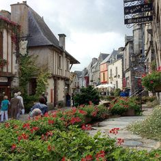 #rochefortenterre #townscape #streetplants #streetphotos #iwalkedthisstreet #bretagne #brittany