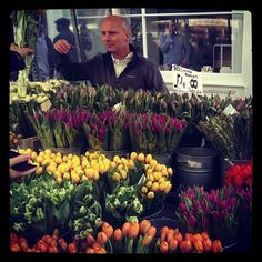 Tulips at Columbia Road Flower Market in London