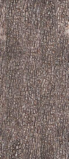 Bark Texture 1 by AGF81.deviantart.com on @DeviantArt