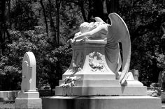 GLENWOOD CEMETERY - HOUSTON 2013 Cemetery, White Photography, Houston, Van, Black And White, Memorial Park, Black White, Vans, Black N White