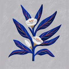 Plants – Illustration by Carmi Grau - Nose Piercing Art And Illustration, Floral Illustrations, Illustrations Posters, Landscape Illustration, Watercolor Print, Watercolor Flowers, Poster S, Arte Popular, Collages