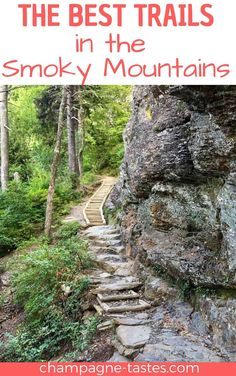 Are you planning to hiking in the Smokies? Check out my hiking tips, plus some of the best trails in the Great Smoky Mountains National Park. Smoky Mountain Trails, Smoky Mountains Hiking, Smoky Mountain National Park, Smokey Mountain, Smoky Mountain Vacations, Smoky Mountains Tennessee, Appalachian Mountains, Mountain Hiking, Tennessee Hiking