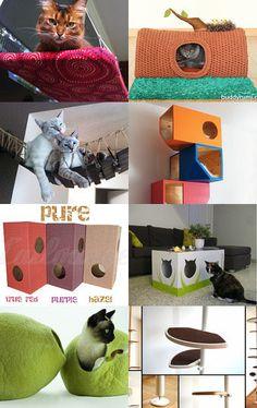 Oggetti utili per i #gatti, di ogni tipologia.