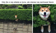 photo yy 86_zpsafehir7o.jpg
