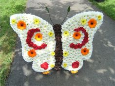 butterfly « Val Spicer