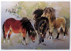 Woodland Ponies Postcard - Janet Grahame Johnstone  March House Books