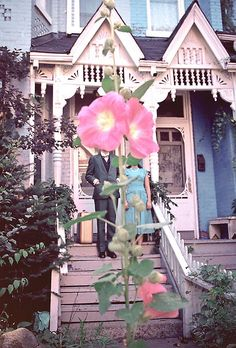 Hopeless Emptiness  from the series The Meeting Hollyhock, American Psycho, American Gothic, Collages, Collage Art, Magritte, Art Photography, Vintage Photography, Pink Flowers