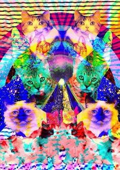 Cats, trippy cats with lasers. Want a reason why? Too bad. Kittens. Just be all up in your third dimension.