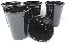 Bloem MP14174212 12Pack Milano Planter 18Inch Living Green -- Read more at the image link.