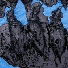 oiled-shearwaters-300x300.jpg 300×300 pixels