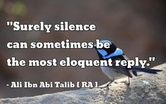 """Surely silence can sometimes be the most eloquent reply.""  – Ali ibn Abu Talib (RA)"