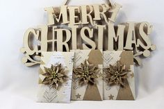 Christmas string tie envelopes seed packet gift money