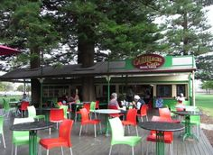 This is where we had lunch, on the Esplanade at Fremantle, the cafe was an old train carriage, and they built the verandah around the trunks of Norfolk Island Pine trees.  One day we may have lunch here! Cool how it is built around the trees!