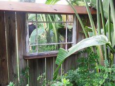 window mirror as garden wall