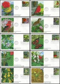 Set Includes: 4474a Hawaii Amakihi / 4474b Akepa / 4474c 'I'wii / 4474d Oma'o / 4474e 'Oha / 4474f Pulelehua Butterfly / 4474g Koele Mountain Damselfly / 4474h 'Apapane / 4474i Jewel Orchid and 4474j Happy Face spider. Have description of the stamp subject printed on the back. ARE IN MINT, UNADDRESSED CONDITION.
