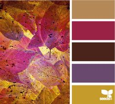 fallen hues...love the purple and plum in this but not the yellow and browns. For me fall colors include the plum and NOT ORANGE
