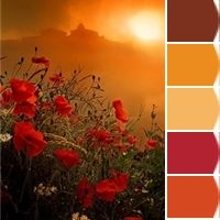 Instantly turn any picture into a palette with Chip It!, created for you by Sherwin-Williams.