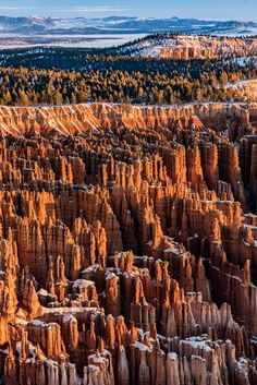 Bryce Canyon this morning Bryce Canyon, Photography, Outdoor, Outdoors, Outdoor Games, Photograph, Outdoor Living, Fotografie, Fotografia