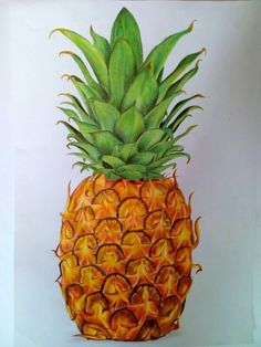 Pineapple, Fruit, Drawing, Food, Pine Apple, Essen, Sketches, Meals, Drawings