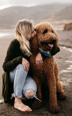 So cute-dog love Cute Puppies, Cute Dogs, Dogs And Puppies, Doggies, Psychiatric Service Dog, Funny Animals, Cute Animals, Doodle Dog, Family Dogs