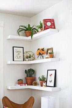 Prateleiras de canto com pequenos quadros apoiados juntamente com plantas de outros objetos decorativos