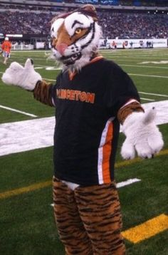 Princeton University Tigers Mascot At A Football Game