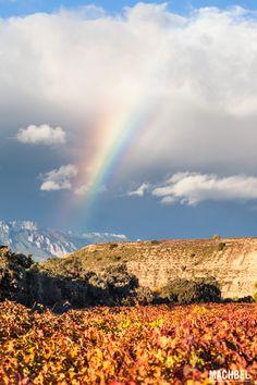 Arcoiris sobre los viñedos de otoño Viñedos en otoño La Rioja España by machbel #rainbow