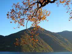 Como lake in November