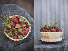Sponge cake, mousse, sponge cake, mousse, lady fingers, ribbon, strawberries - Athena Plichta Photography | journal