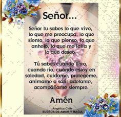 SUEÑOS DE AMOR Y MAGIA: Señor acompáñame siempre.