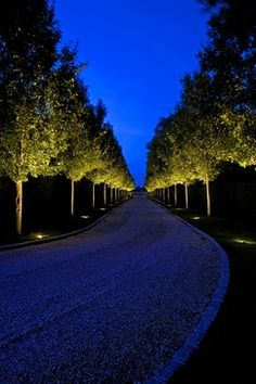 Garden Landscaping Edging trees uplighter for long driveway in traditional landscape style of 10 Divine Ideas of Driveway Lighting Landscape Lighting Design, Modern Landscape Design, Traditional Landscape, Driveway Design, Driveway Landscaping, Modern Landscaping, Driveway Ideas, Landscaping Ideas, Driveway Pavers