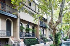 524 Bourke Street, Surry Hills 2010 - House for sale - BresicWhitney Moving Out Of Home, Surry Hills, 3 Bedroom House, Private Garden, Ideal Home, Terrace, Home And Garden, Real Estate, Australia