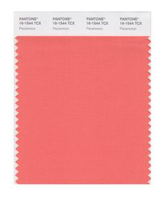 Pantone Smart 16-1544 TCX Color Swatch Card, Persimmon