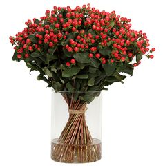 We, at Florius, supply a wide-ranging variety of fresh flowers grown from the great highlands of Kenya and Ethiopia. Growing Flowers, Fresh Flowers, Tango, Flower Arrangements, Berry, Glass Vase, Gift Ideas, Big, Plants