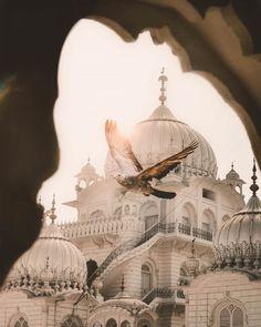 Showcasing the Incredible side of India Beautiful Nature Pictures, Beautiful Sites, Beautiful Places To Travel, Rishikesh, Varanasi, Agra, Guru Nanak Wallpaper, Shri Ganesh Images, Ancient Indian History