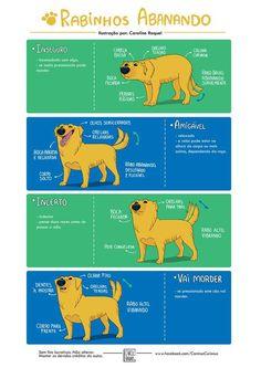 Entenda o que seu cachorro quer dizer