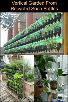 Hydroponic Gardening Grow Your Own Kitchen Garden by Making a Vertical Planter from Recycled Soda Bottles - Create a bottle tower garden for small spaces. Vertical Vegetable Gardens, Vertical Garden Diy, Vegetable Planters, Gutter Garden, Herb Garden, Planter Garden, Potager Bio, Vertical Planter, Tower Garden