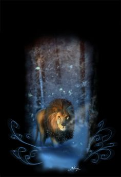 The King of Narnia by *Katikut on deviantART